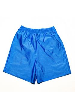 Special Needs Youth Swim Diaper Trunks - Royal